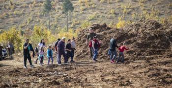 В Стара Загора се отменя зелена инициатива
