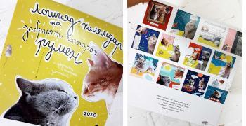 Котаракът РУМЕН издаде календар 2020 | ВИДЕО