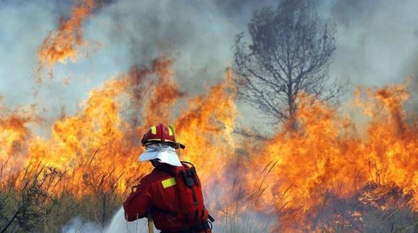 Хиляди пилета изгоряха при пожар