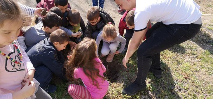 Засадиха 80 дръвчета в детски градини в Стара Загора (СНИМКИ)