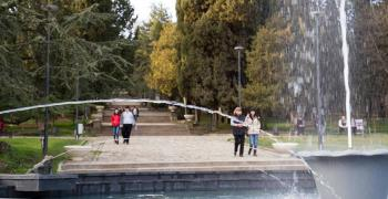 Подменят над 200 дървета на Аязмото