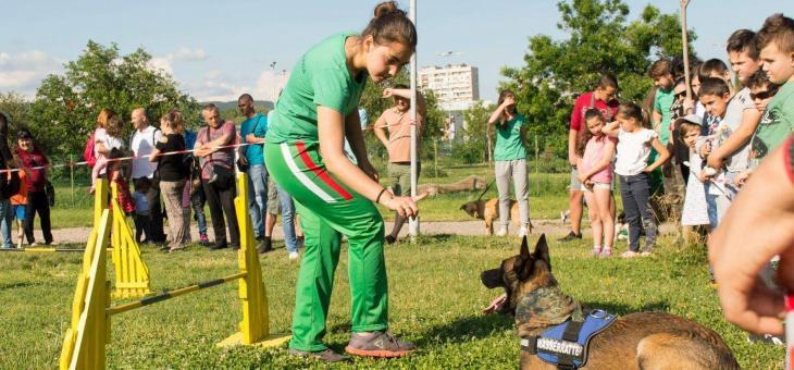Намордниците не решават проблема с агресивните кучета – само ще създадат повече проблеми | ВИДЕО