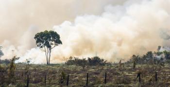 Пожарът в с. Малка Верея, Старозагорско вероятно е умишлен