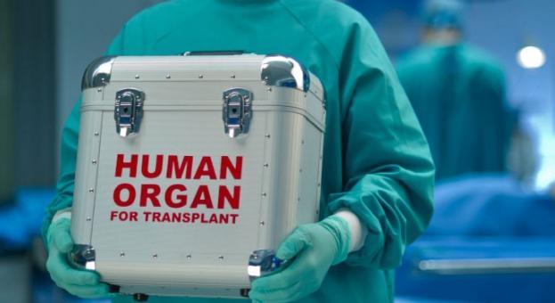Човешки орган на черно върви от 1000 до 15 000 евро