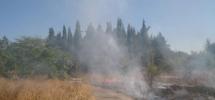 """Пожар: Горят сухи треви в """"Бедечка"""""""