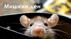 Мишкин ден е. Каква е традицията?