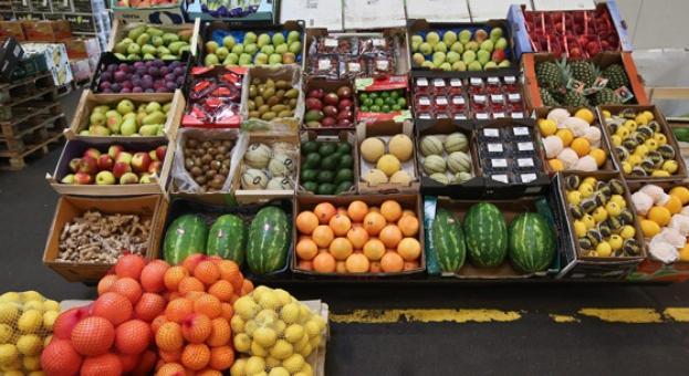 Производители се оплакват от цената на вносните зеленчуци