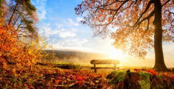Първият учебен ден идва със слънце
