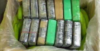 Заловиха половин тон кокаин в контейнер с банани от Южна Америка в Хърватия