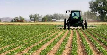 Близо 18 000 земеделци декларираха доходите си за месец