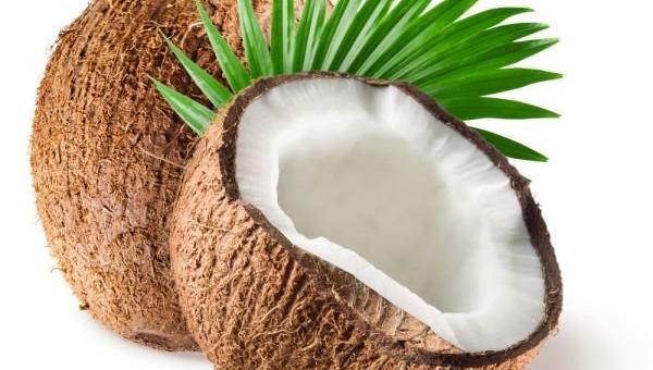 Защо наричат кокоса дървото на живота