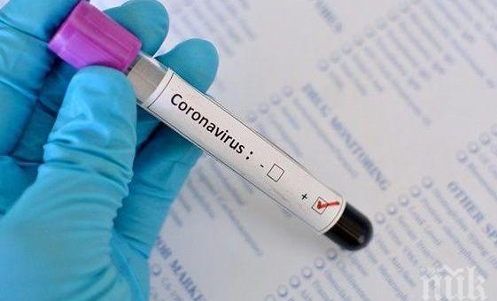 250 са новите заразени с COVID-19