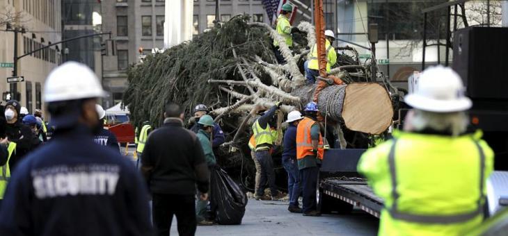 Огромна коледна елха в Ню Йорк