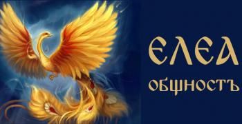"""Елена Ангелова, """"Елеа България"""": Даваме поле за изява на всякакви творци и учени"""
