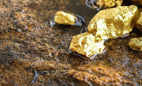 Златото в България и света
