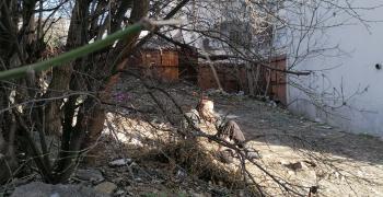56-годишен бездомник живее сред мръсотия в Стара Загора