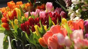 Празнуваме Цветница!