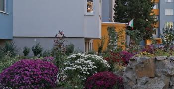 В Стара Загора съседи се грижат за цветни градинки