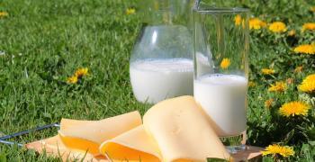 Започват проверки на млечни продукти в магазините