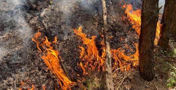 Борбата с пожарите продължава
