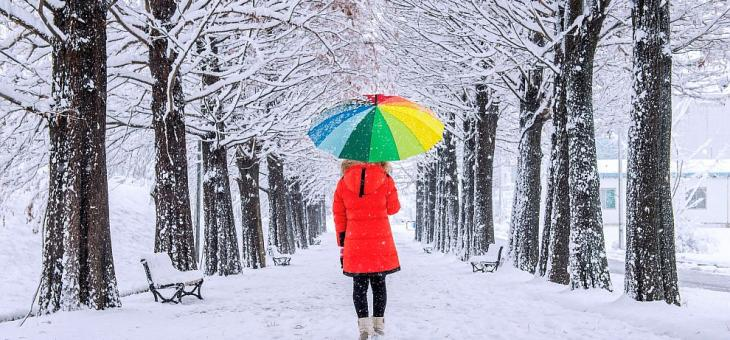 Сняг, вятър и студ