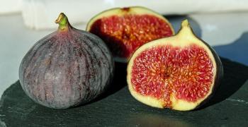 Богатството на смокините