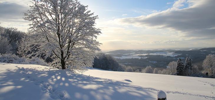 Сняг в София, Перник и Кюстендил утре