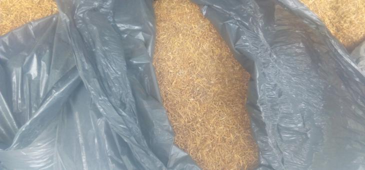 Съдът в Чирпан наложи условна присъда заради тютюн без бандерол