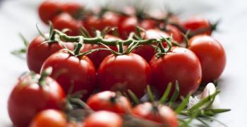 Производителите на плодове и зеленчуци могат да кандидатстват за краткосрочни кредити до 30 юни