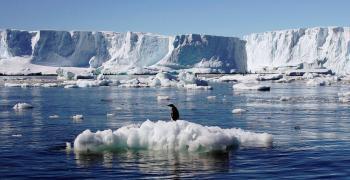 Ледената покривка на морето около Антарктида се свива